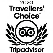 travellersChoice2020